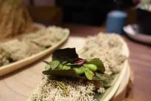 Fiesta de las verduras de Tudela