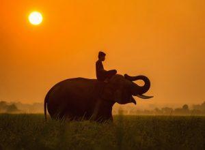 Los mejores destinos para irte de luna de miel, como a Camboya