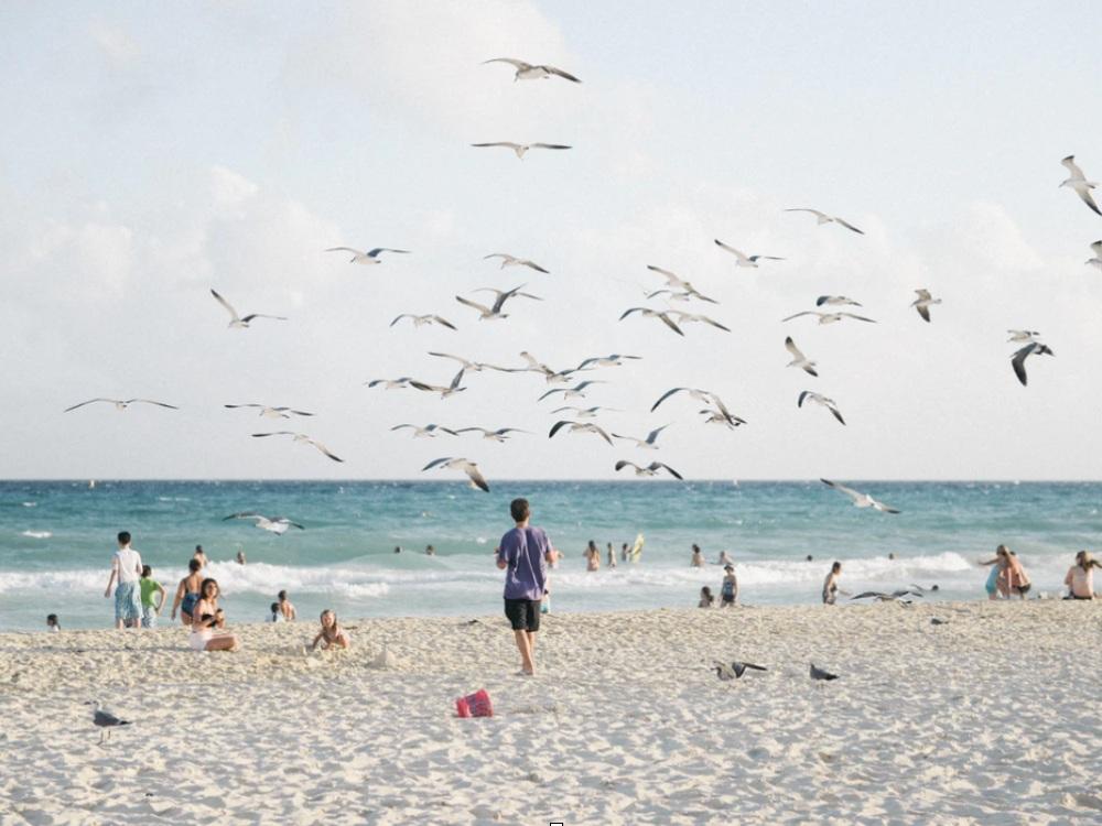 Cómo llegar de Cancún a Playa del Carmen
